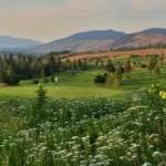 Ultimate okanagan wedding destinations. Okanagan Wedding Venues for Weddings in British Columbia, Canada