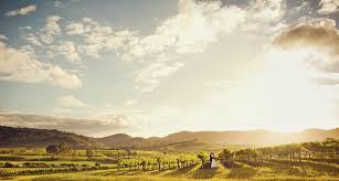 Okanagan Wedding Film - vineyard wedding with rocky mountain backgrop. Tailored Fit Films Okanagan Wedding Video